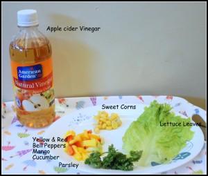 ingredients mango salad